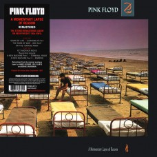 """LP PINK FLOYD """"A MOMENTARY LAPSE OF REASON"""""""