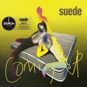 "LP SUEDE ""COMING UP"""