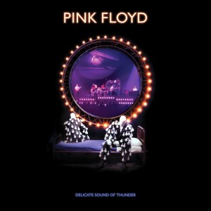 """CD PINK FLOYD """"DELICATE SOUND OF THUNDER"""" (BOX)"""